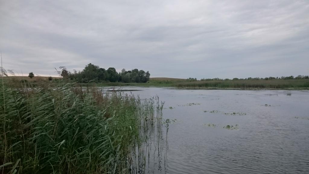 jezioro-w-polu-1