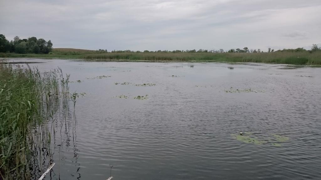 jezioro-w-polu-2