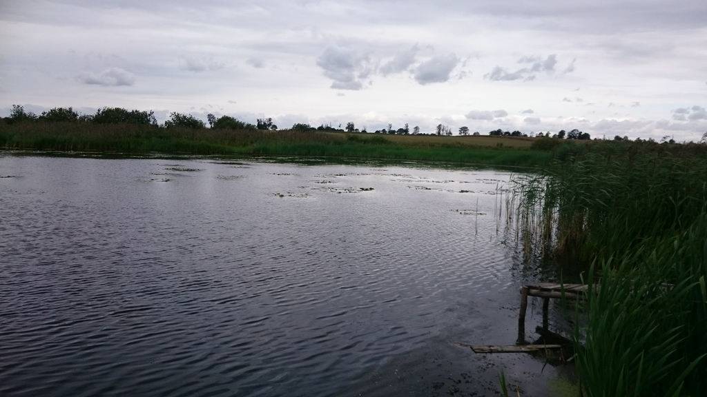 jezioro-w-polu-3