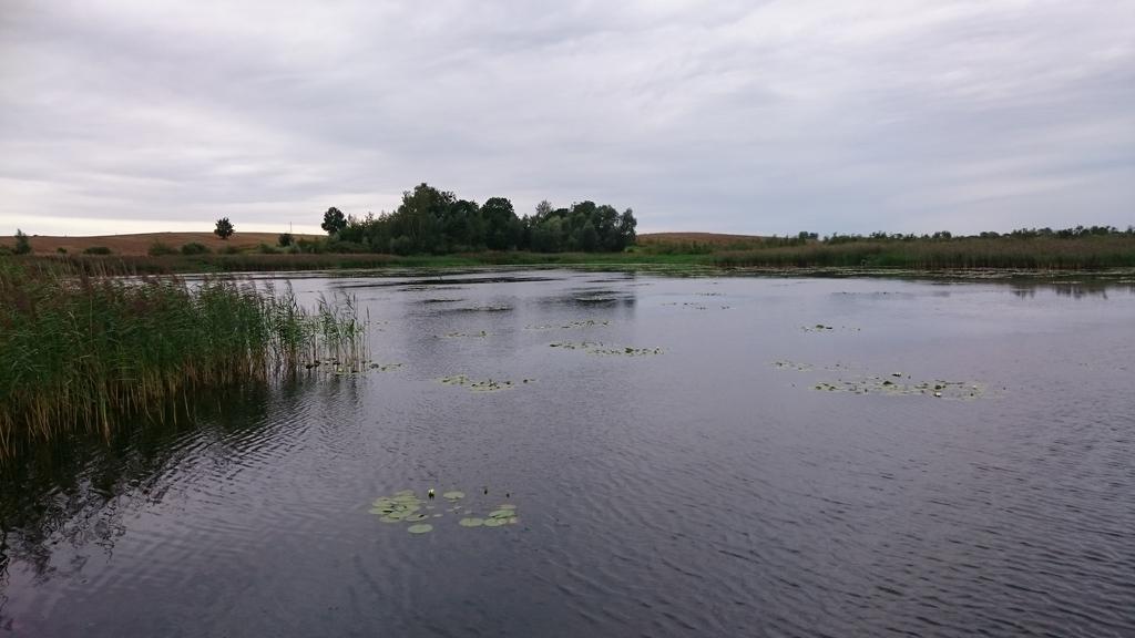 jezioro-w-polu-4