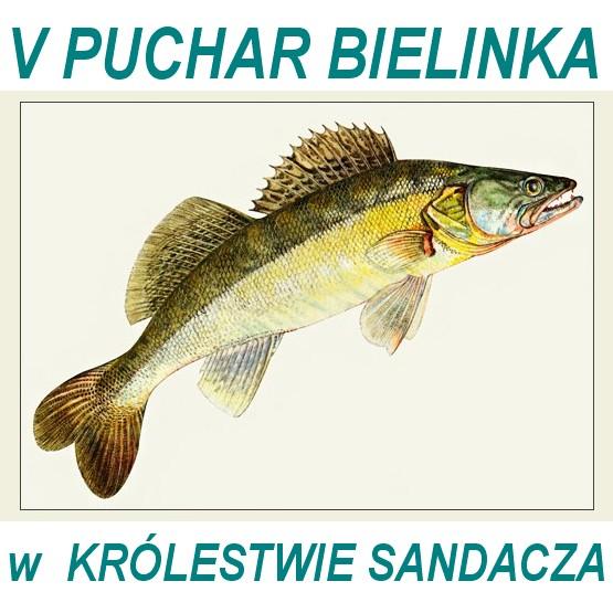 sandacz2