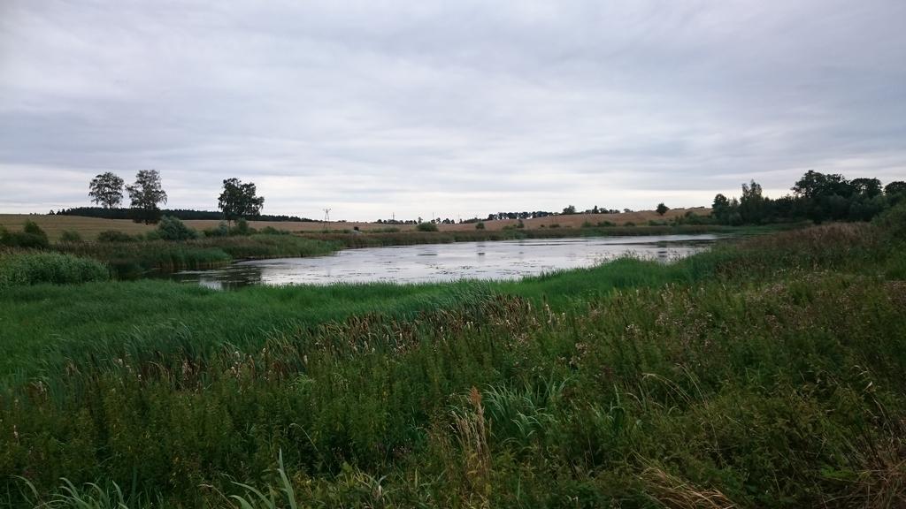 jezioro-w-polu